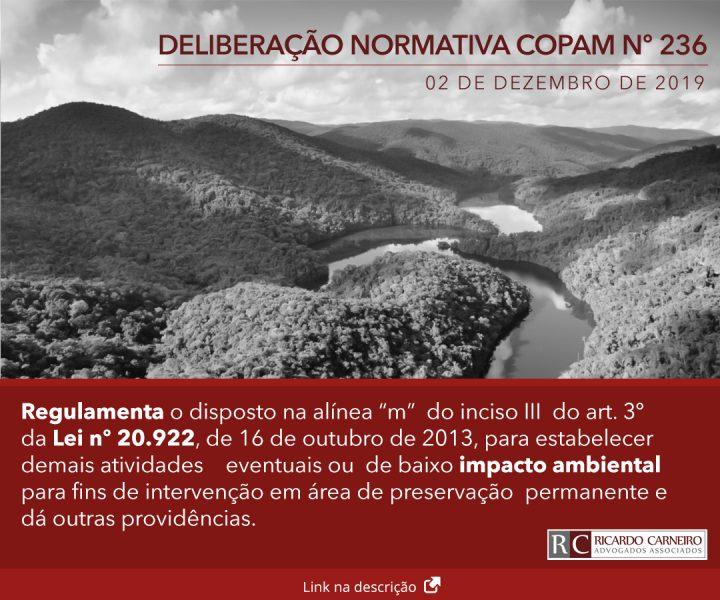 DELIBERAÇÃO NORMATIVA COPAM Nº 236, DE 02 DE DEZEMBRO DE 2019